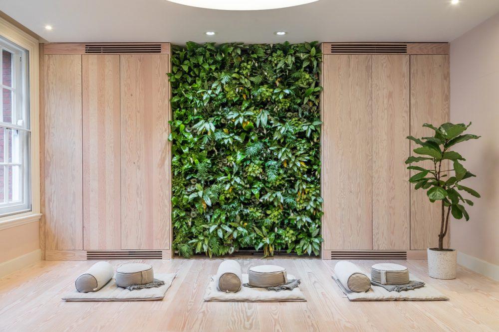 Biophilic design for Mind Meditation Studio by Oliver Heath Design